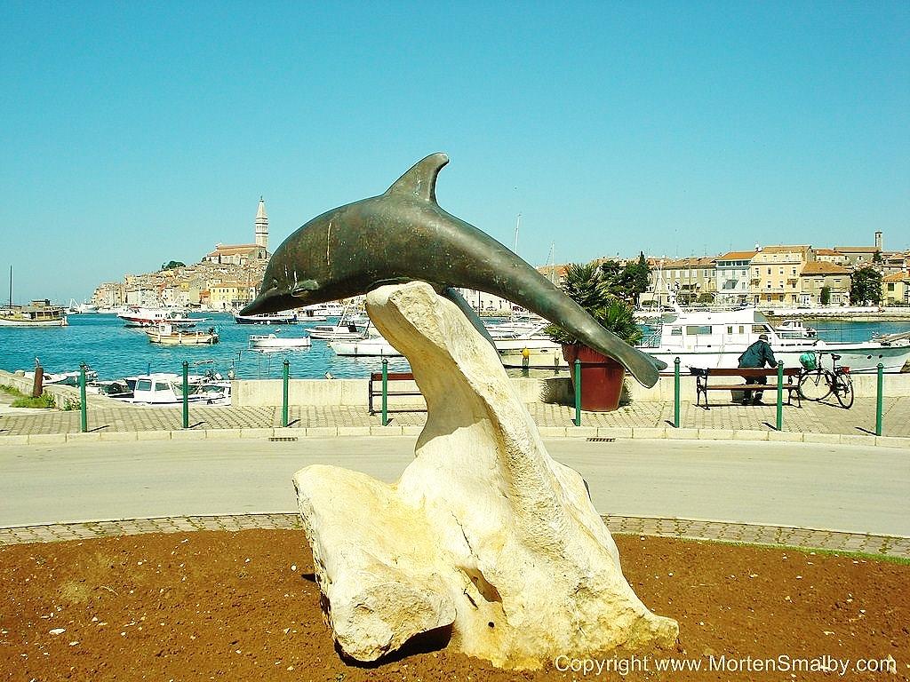 Delfin Rovinj